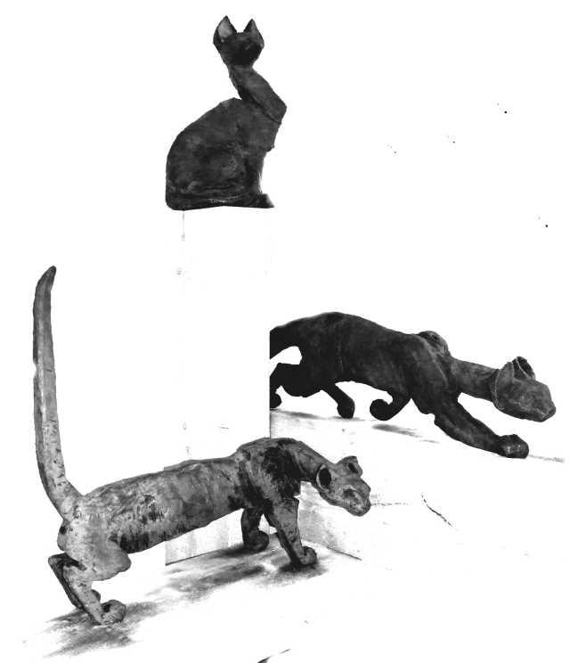 3katzen